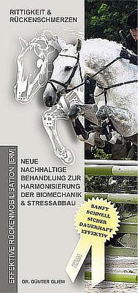 Rückengesundheit Pferde, Chiropraktiker NRW